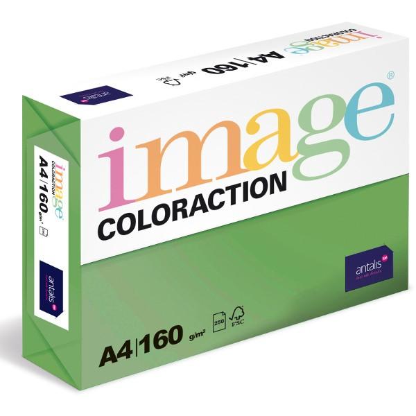 Papír kopírovací Coloraction A4 160 g zelená sytá 250 listů